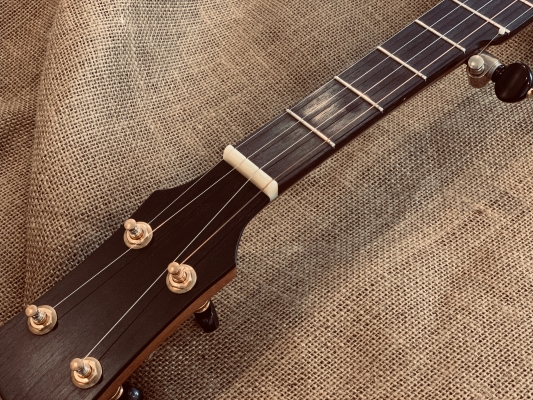 Unbleached bone nut with ebony fingerboard and peghead overlay
