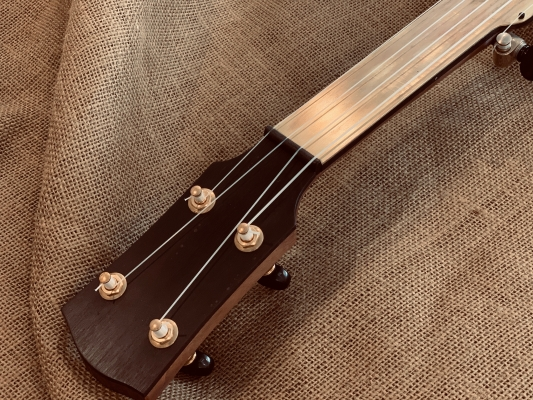 Black buffalo horn nut with brass-plated half-fretless fingerboard and peghead overlay