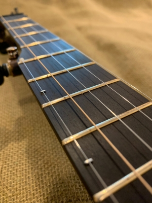 5th-string spikes on ebony fingerboard