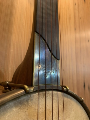 Antiqued Brass scoop plate with logo on Walnut neck with fretless ebony fingerboard